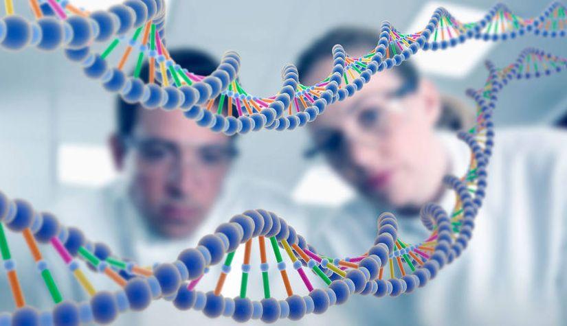 Генетики запустили программу выявления детей с мышечной дистрофией Дюшенна