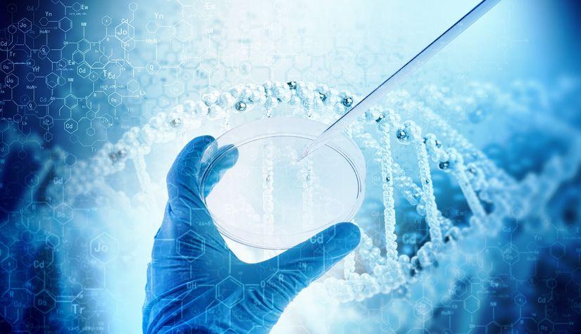Компания  Capricor приостановила клинические исследования препарата для лечения мышечной дистрофии Дюшенна