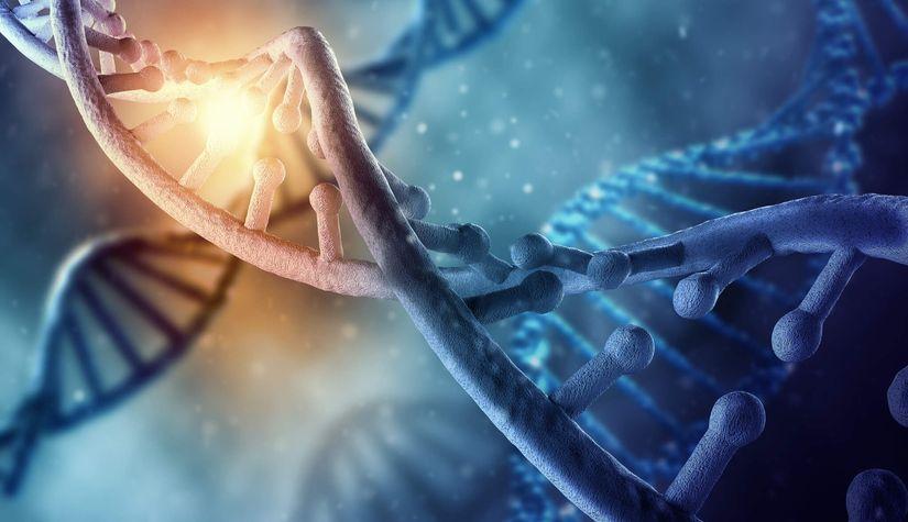 Новые данные о планах по регистрации досье на препарат Рисдиплам для лечения СМА