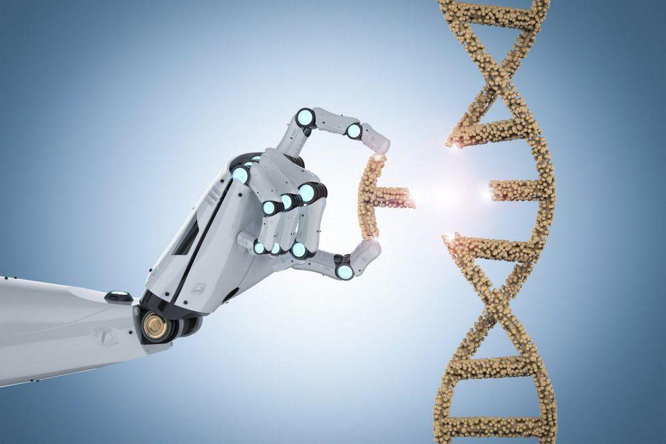 При помощи CRISPR впервые удалось отредактировать несколько генов одновременно