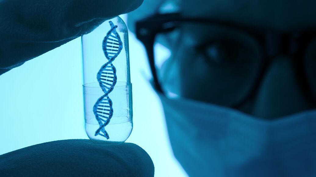 Ученые открывают тайны хромосом
