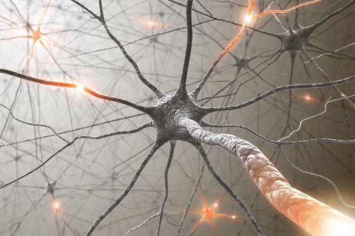 Достигнуты успехи в лечении бокового амиотрофического склероза