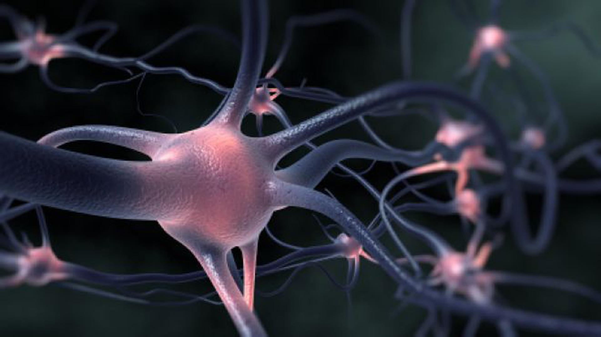 Ученые приблизились к разработке лечения болезни Лу Герига