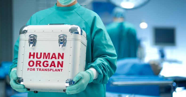 Трансплантология: Топ-5 прорывов трансплантации