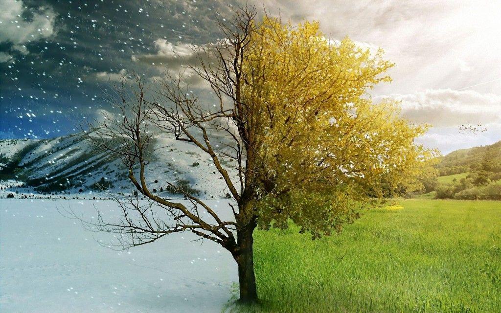 Белорусский климат меняется: температуры растут, экстремальных явлений становится больше