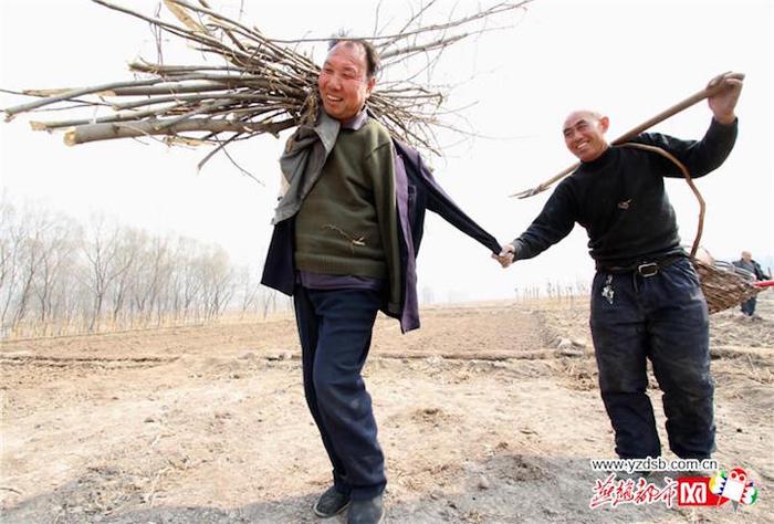Двое друзей с инвалидностью, посадили более 10 тысяч деревьев в Китае
