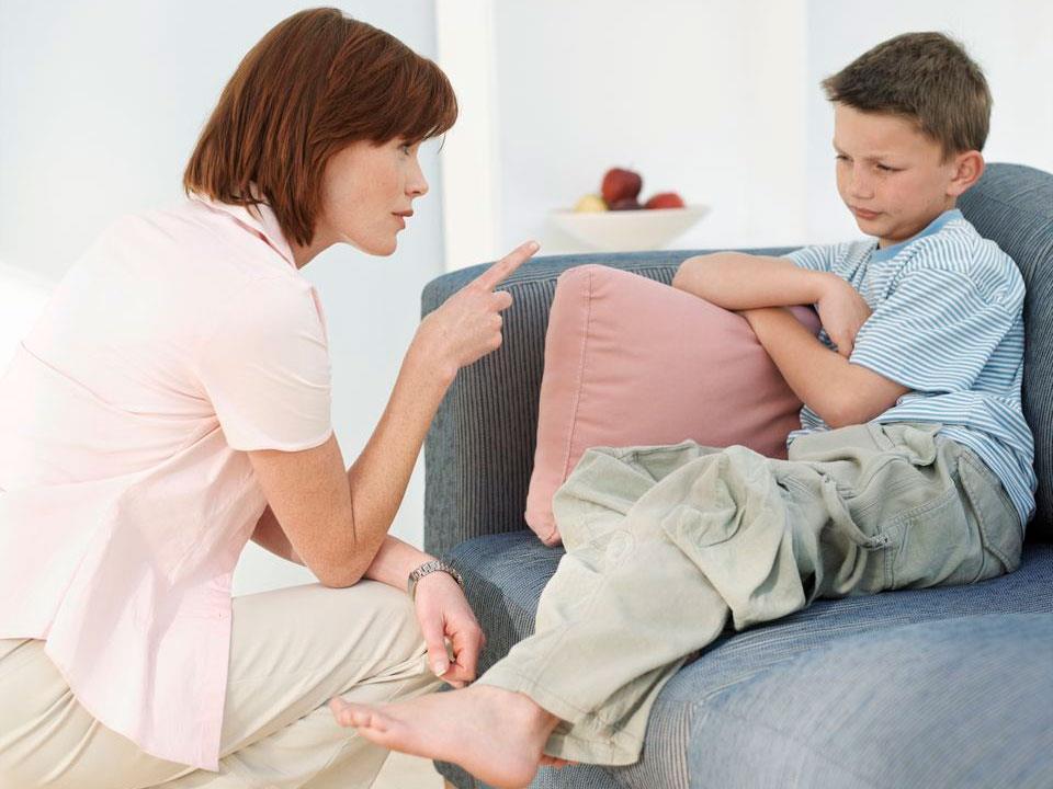 Поведение, обучение и эмоциональный контроль.