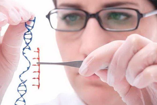 Первый шаг на пути к генной терапии для лечения митохондриальных заболеваний