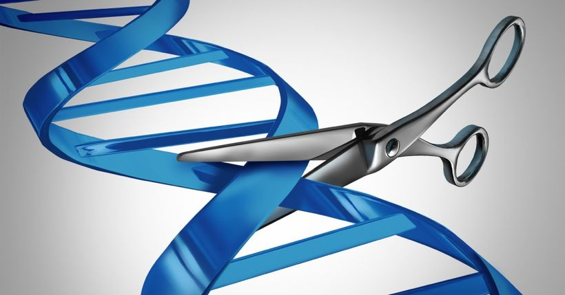 Запомните эти буквы. Что такое CRISPR/Cas9 и как эта технология изменит медицину