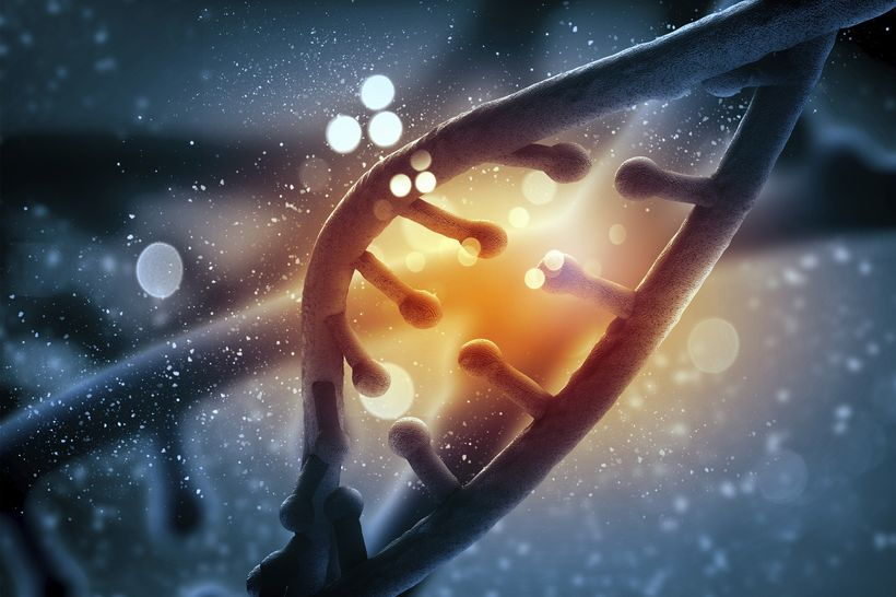 Система CRISPR-Cas9 впервые использована для мечения РНК в живых клетках