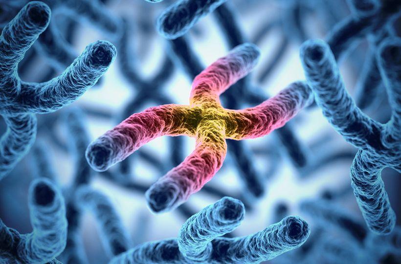 Американка утверждает, что прошла первую в мире генную терапию против старения