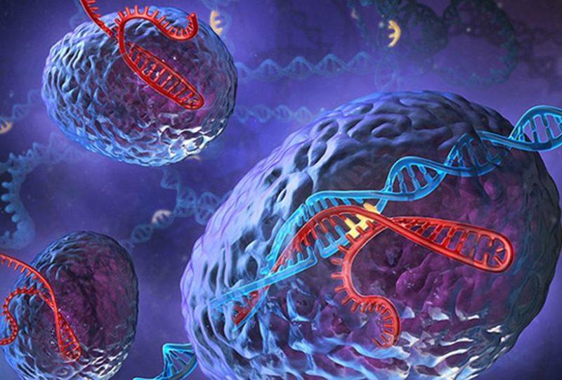 Рисунок художника системы CRISPR-Cas Изображение: Steve Dixon / Feng Zhang / MIT