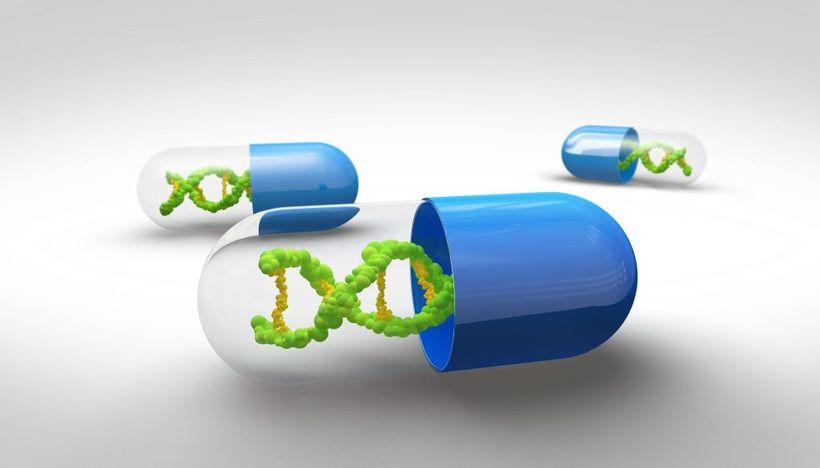 Ученые готовы наращивать мышцы модификацией генов