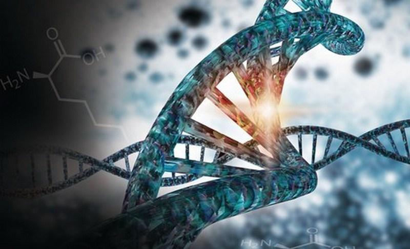 Австралийское патентное ведомство выдало патент на CRISPR компании Merck