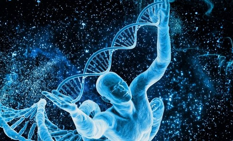 Дизайнеры человеческого генома: что такое Crispr/Cas и как скоро ученые начнут менять ДНК пока нерожденых детей