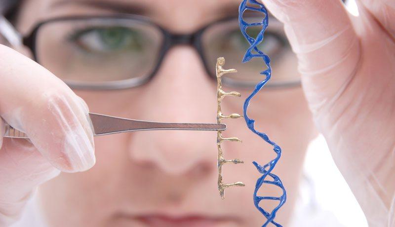 9 достижений, которые были бы невозможны без CRISPR