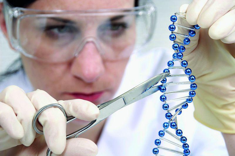 Генетики объяснили причину ошибки в статье про мутации из-за CRISPR