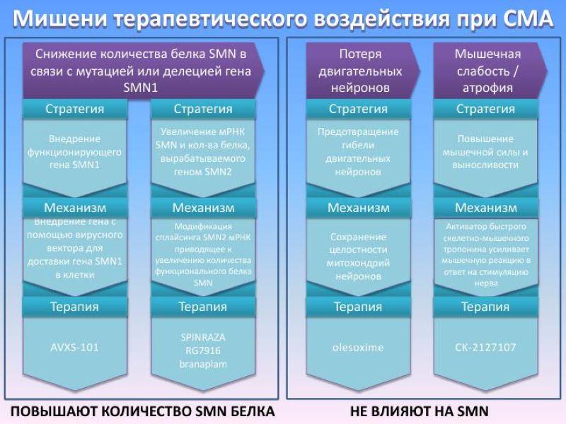 Препараты для лечения СМА :  сравнительный обзор утвержденных и   находящихся в разработке препаратов