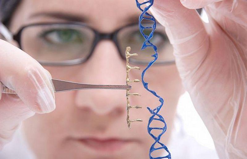 Методом искусственной эволюции создан новый фермент для редактирования геномов
