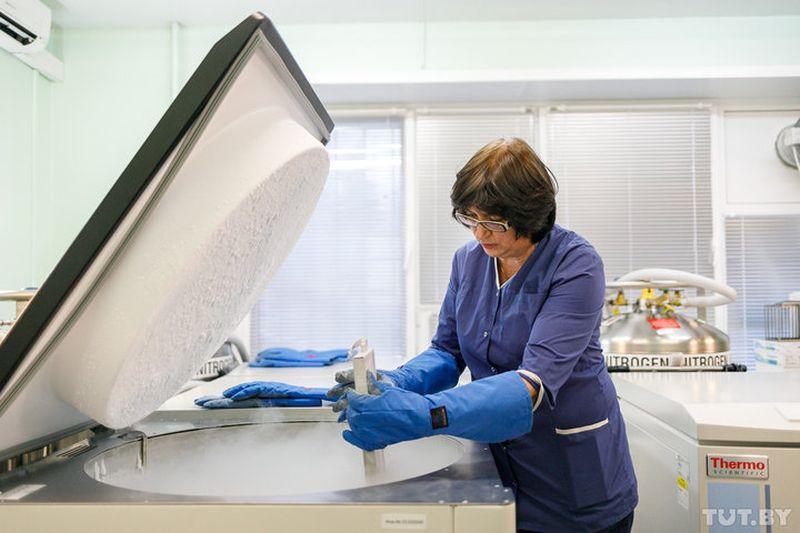 Как в Беларуси замораживают стволовые клетки новорожденных, зачем и сколько это стоит