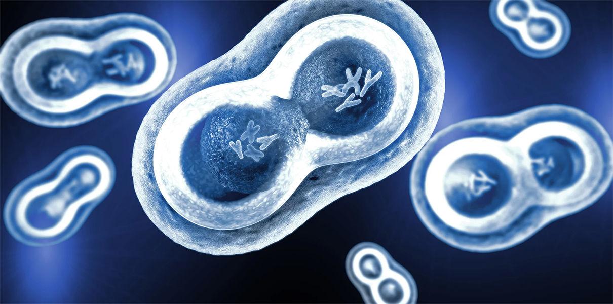 На смену CRISPR идет генное редактирование 2.0