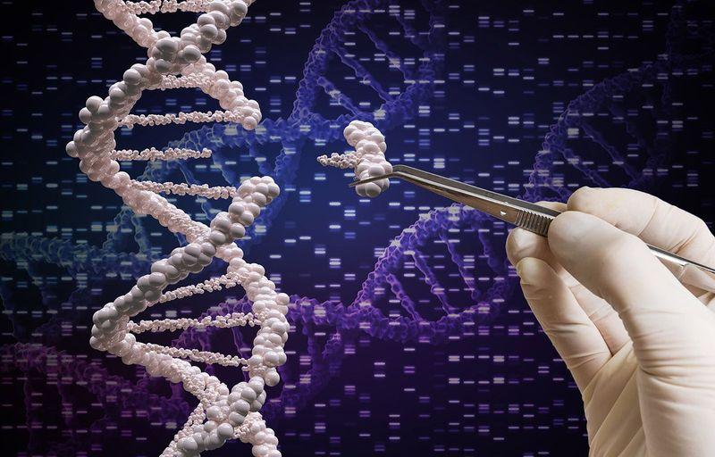 Новый метод редактирования генома поможет при неизлечимых болезнях