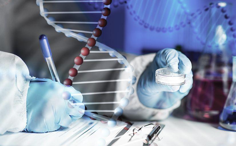 Компания Summit Therapeutics обьявила данные 2 Фазы 24 недельного клинического исследования препарата Ezutromid