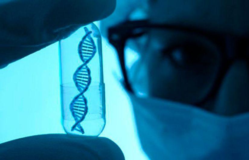 Исследователи с помощью генной терапии смогли предотвратить развитие тяжелого наследственного заболевания в утробе матери