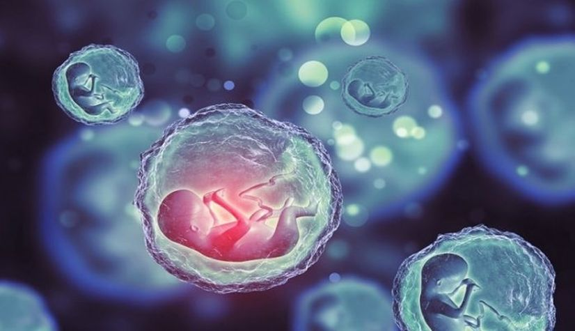 Сперма от мертвых, органы от живых: можно или нельзя?