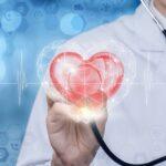 Биологи выяснили, как сердце противостоит мышечной дистрофии Дюшенна