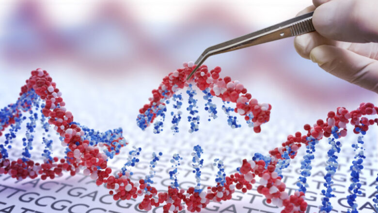 Препарат для борьбы с мышечной дистрофией Дюшенна улучшает работу митохондрий