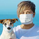 ВОЗ просит больных коронавирусом не контактировать с питомцами