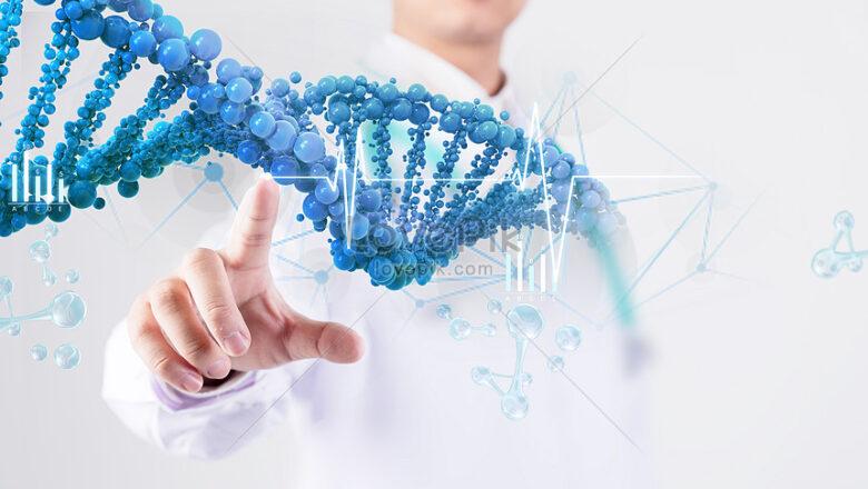 Ученые нашли участки ДНК, которые влияют на механизм включения и выключения генов