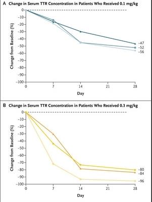 Концентрация транстиретина в крови у пациентов после инъекции низкой (А) и высокой (В) дозы препарата.  Gillmore et al. / NEJM, 2021