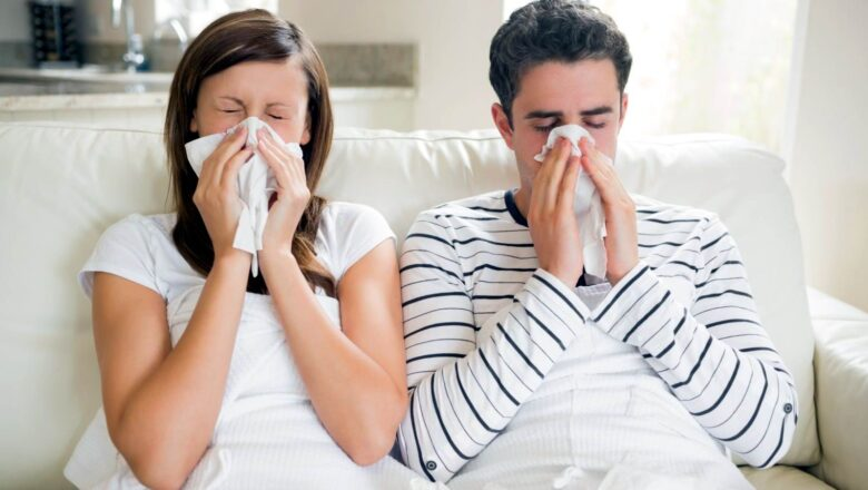 Все, что нужно знать о вирусе гриппа