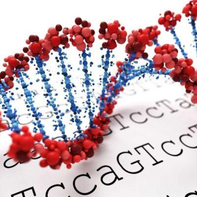 «Генериум» занялся разработкой генной терапии миодистрофии Дюшенна